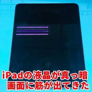 iPadの液晶が映らない、黒くにじんでる、画面に線が出てる